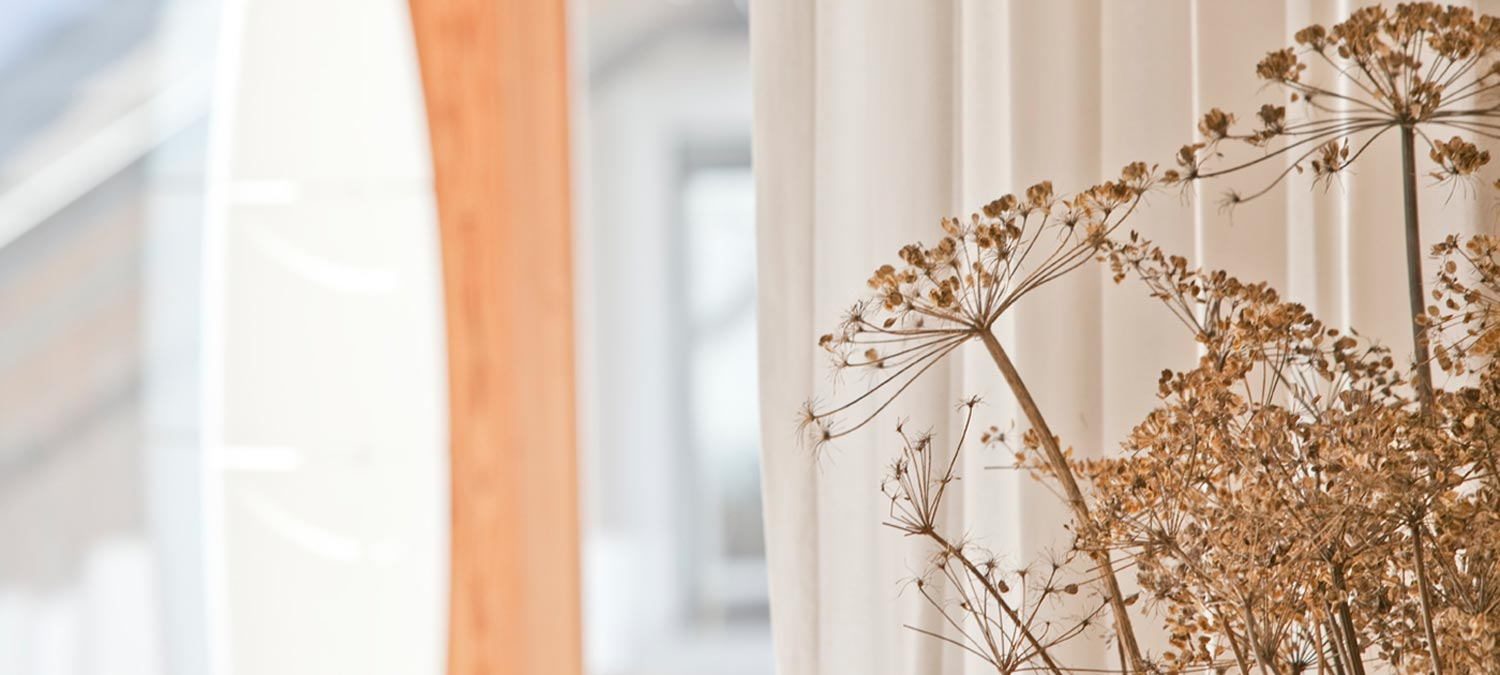 Detail on a bunch of dried flowers with large bright windows in the background